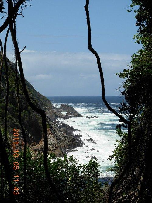 Tsitsikamma view
