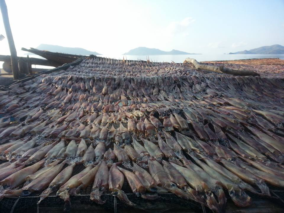 Inapupuan's main source of income is from the dried squid that they ship to Manila once a week.